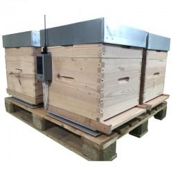 Balance connectée pour ruches multiples.