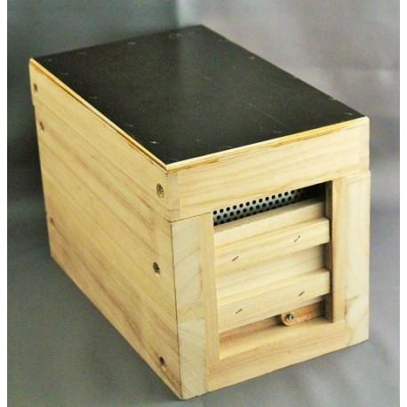 Ruchette apidea en bois